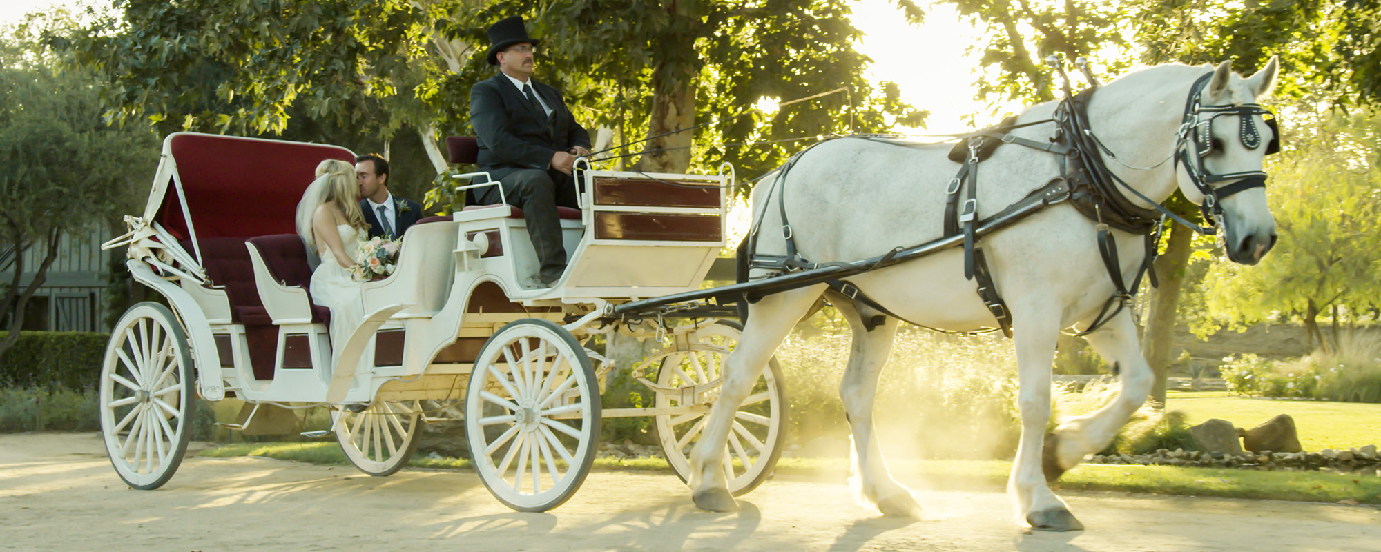 Horse-Drawn Carriage Rides | Temecula, CA - Temecula Carriage Company